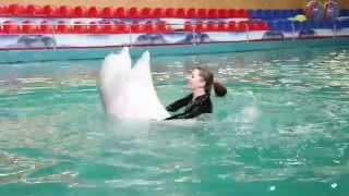 Купание с дельфинами Ярославский дельфинарий(С автором ролика можно связаться по адресу: http://vk.com/leshka_chelovek., 2014-03-26T02:53:03.000Z)
