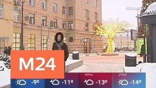 Высота сугробов в Москве превысила 20 сантиметров - Москва 24