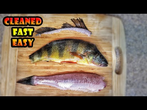 How To Clean A Yellow Perch Fish By Peeling The Skin Off