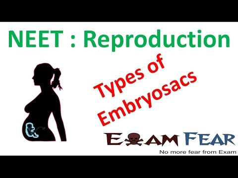 NEET Biology Reproduction : Types of Embryosacs (Monosporic, Bisporic, Tetrasporic)