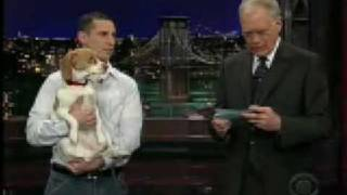 "Baily Beagle ""Plays Dead"" On National TV"