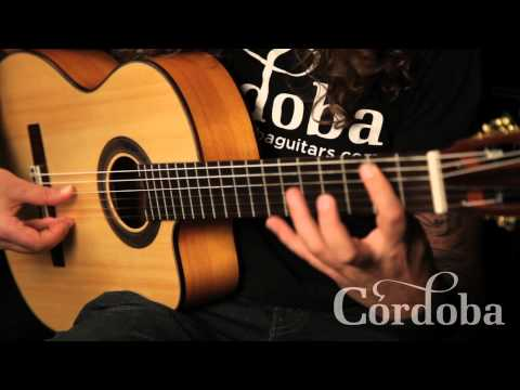 Basic Flamenco Techniques