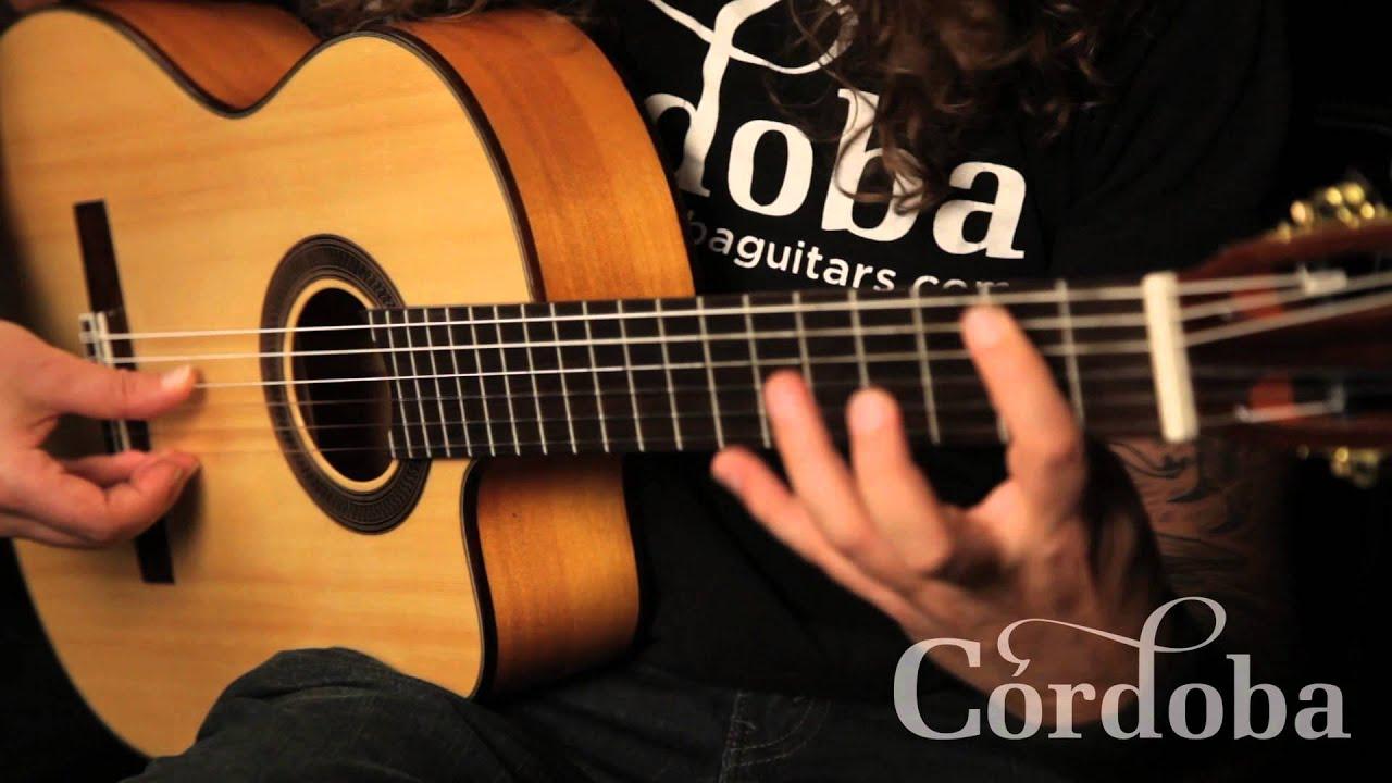 Basic Flamenco Techniques Youtube