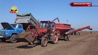 Посевная 2018 в ДНР. Что мешает собирать еще больший урожай?