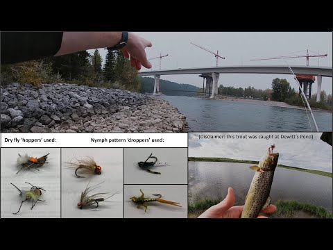Bow River Trout Fly Fishing, Calgary, Alberta (Bowness To Stoney)
