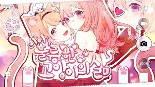 嗚呼、素晴らしきニャン生 Cover by Ara, Nagi