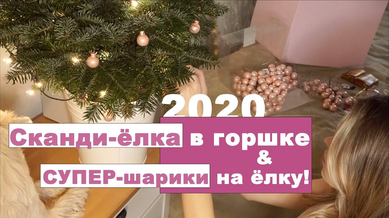 Готовимся к Новому году! Наряжаем елку | Мои ошибки в 2019 - почему умерла елка?