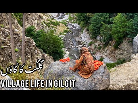 Village Life in Gilgit Baltistan | Bargo Pine  | Village Foo
