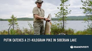Putin Catches a 21-kilogram Pike in Siberian Lake(Russian President Vladimir Putin and Prime Minister Dmitry Medvedev holidayed together in a remote part of Russia's Tuva republic recently. Putin caught a ..., 2013-07-26T16:17:32.000Z)
