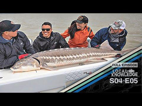 Giant Sturgeon Fishing - S04 E05 Gate Crashers