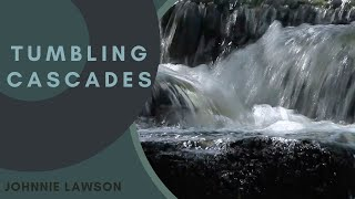 8 Hours Nature Sounds Meditation for Insomnia Study & Relaxing by Johnnie Lawson-Birds singing