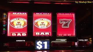 DOUBLE LION★$1 Slot - 9 Lines @San Manuel Casino [赤富士スロット] [カジノ] [Winner] [スロットで遊ぶ] [スロットで勝つ]