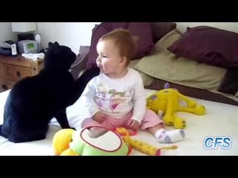 Песня ПРикол - про кота=)) не для детей в mp3 192kbps
