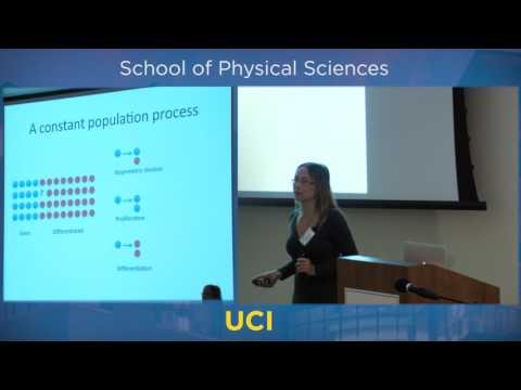 Mathematics of Stem Cells