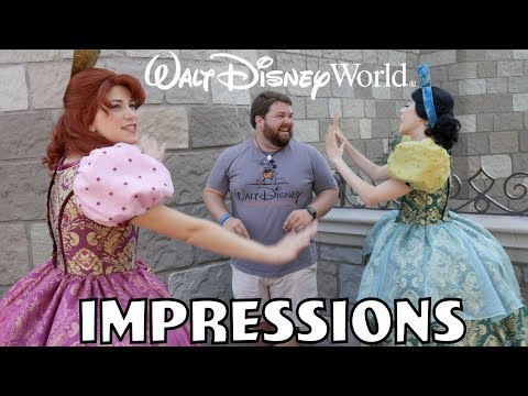 I Scared Cinderella's Step Sisters!   Disney World Impressions