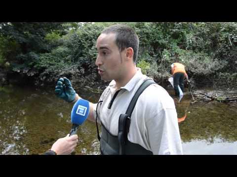 DECLARACIONES   HEBER ARENAS EN LA LIMPIEZA DEL RIO LINARES VILLAVICIOSA SEPTIEMBRE 2015 2