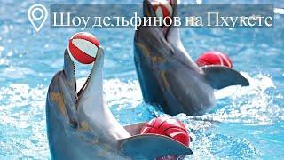 Шоу дельфинов, Дельфинарий Немо | Пхукет | Таиланд | Цены | Отзывы
