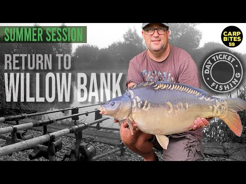 Another 36hrs Carp Fishing At Todber Manor's Willow Bank