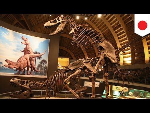 恐竜絶滅、硫酸の雨が原因か (Việt Sub)