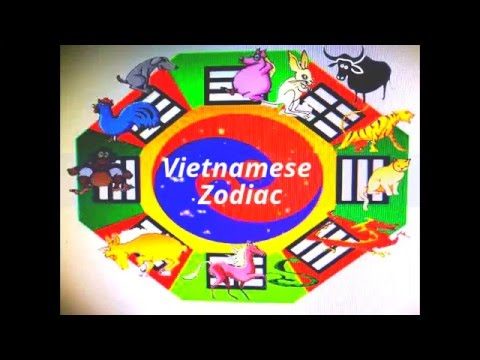 how to say chinese in vietnamese