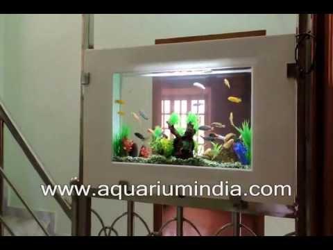 see through wall mounted aquarium by www.aquariumindia.com