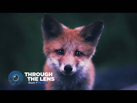 Through The Lens | S04E01 - @kpunkka