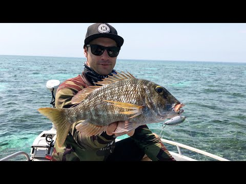 Fishing The Reef Flats In Central Queensland