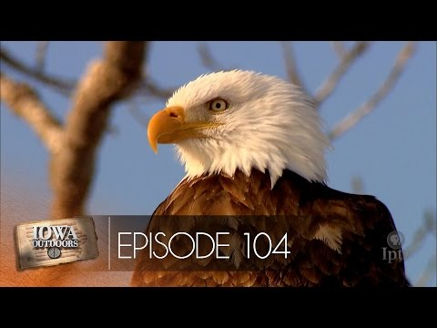 EP 104 | Iowa Outdoors