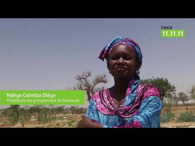 Opération 11.11.11 / Sénégal : Le développement, c'est nos oignons