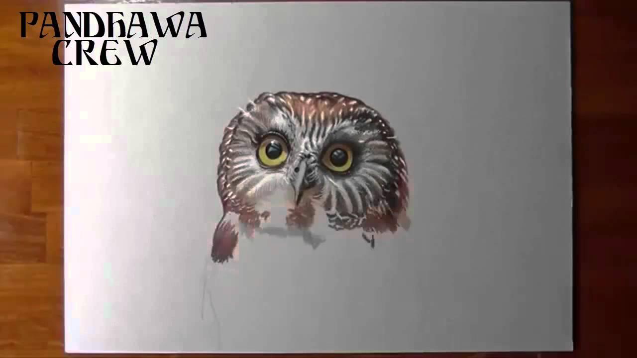 Amazing 3d Drawing Pencil Art Owl YouTube