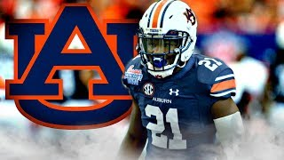 Kerryon Johnson || Wildcat Beast || 2016-17 Auburn Highlights ᴴᴰ
