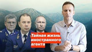 Видео Тайная жизнь иностранного агента