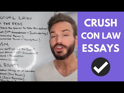 Видео Constitutional law essays