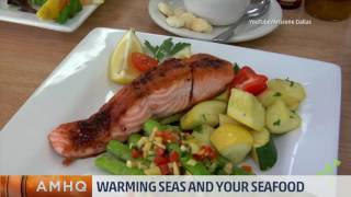Warming Seas and Your Seafood
