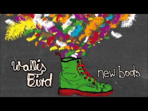 An Idea About Mary  - Wallis Bird