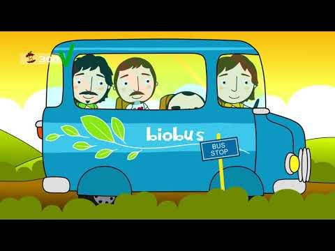 Elio e le Storie Tese  - La canzone circolare