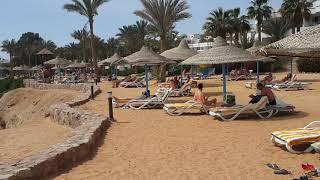 Египет пляж Египет территория отеля Egypt Beach Hotel Queen Sharm Resort