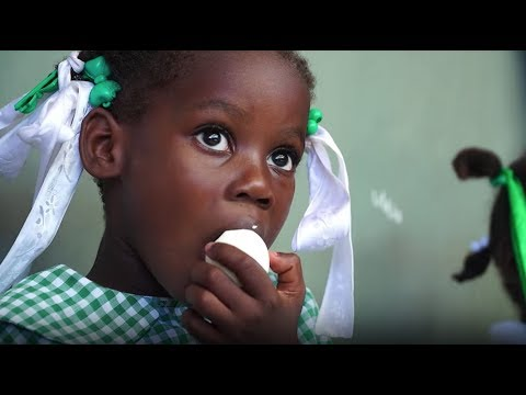 Tyson Foods and Cobb-Vantress Partner With OneEgg to Launch Sustainable Egg Farm in Haiti