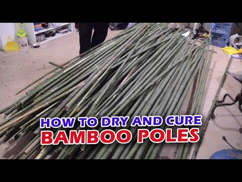 How To Dry And Cure Bamboo Poles