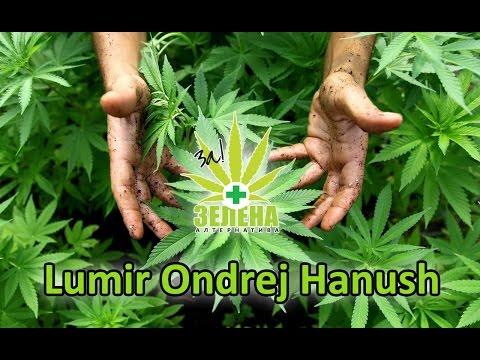 Lumir Ondrej Hanush | Demystifying Cannabis in Macedonia 2014