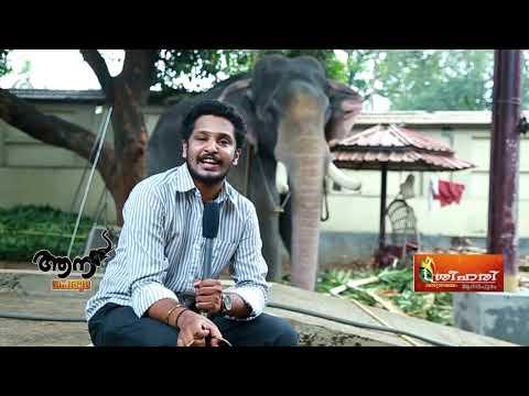 Thiruvambadi Sivasundar  ( Aana peruma  Episode -12 )