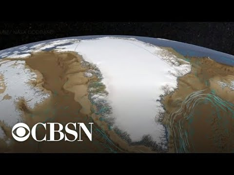 Melting Greenland glacier is growing again