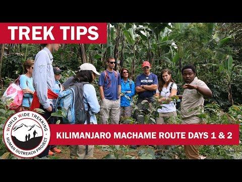 Climbing Kilimanjaro: Machame Route Days 1 & 2   Trek Tips