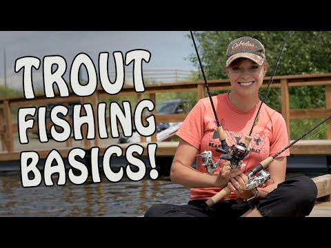 Catch MORE TROUT When Lake Fishing With These Basic Spinning Setups!