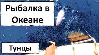Рыбалка в океане Тунцы Посреди Тихого