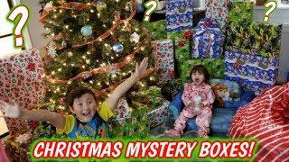 BIGGEST CHRISTMAS HAUL OF MYSTERY BOX PRESENTS! SANTA BROUGHT ETHANS FAVORITE SUPRISES! Part 2
