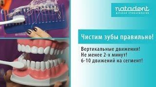 36. Как чистить зубы правильно? Натадент