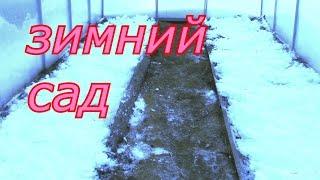 зимний сад(зимний сад какие работы можно сделать., 2016-12-29T00:40:57.000Z)