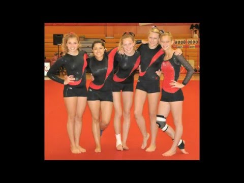 Fallbrook High School gymnastics team- North County News