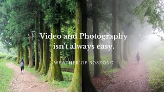 The Two Sides of Boseong: Landscape Photography Vlog